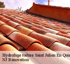 Hydrofuge toiture  saint-julien-en-quint-26150 NJ Rénovation